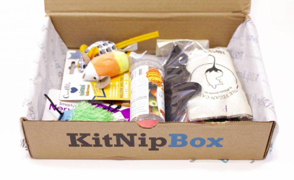 kitnipbox-october-2015-7